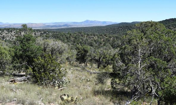 264 Sierra Verde Ranch, Seligman, AZ 86337 Photo 27