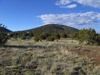 Home for sale: 1634 E. Prospect Ln., Williams, AZ 86046