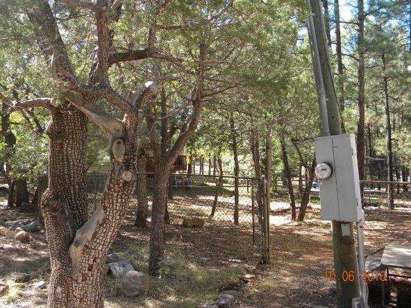 1698 North Dr., Lakeside, AZ 85929 Photo 28