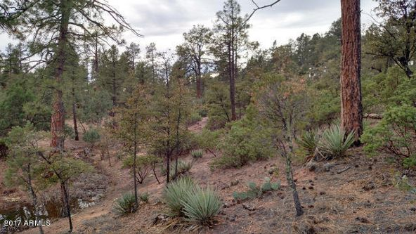 500 S. Primeval --, Payson, AZ 85541 Photo 3