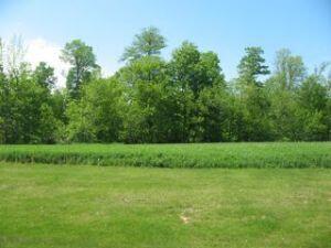 Lt3 Danmar Acres, Whitelaw, WI 54247 Photo 1