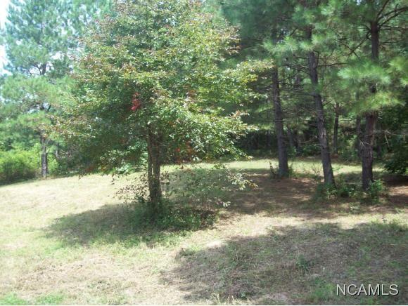 477 Co Rd. 1731, Holly Pond, AL 35083 Photo 4