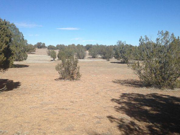 246 Antelope Run, Ash Fork, AZ 86320 Photo 7