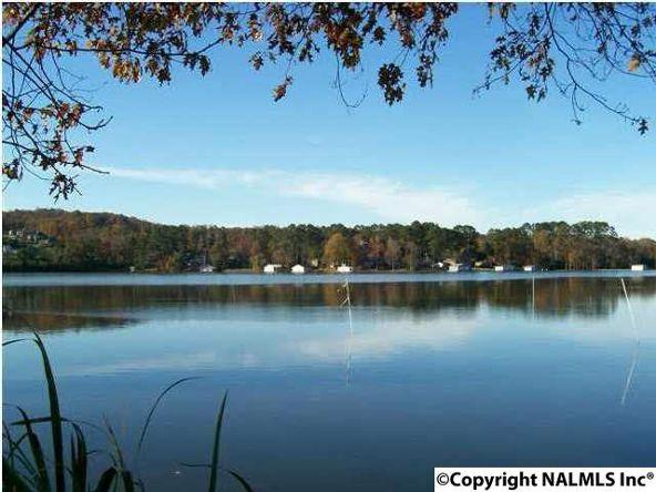 5 Lake Creek Dr., Guntersville, AL 35976 Photo 9