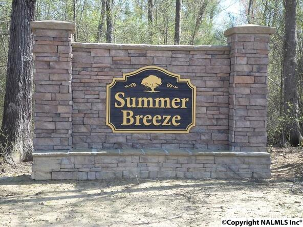 3 Summer Breeze Dr., Cedar Bluff, AL 35959 Photo 5