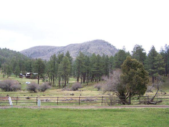 1 County Rd. 2153, Alpine, AZ 85920 Photo 56