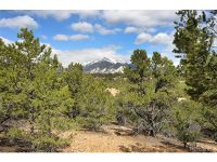 Home for sale: *Tbd* Hwy. 285, Nathrop, CO 81236