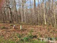 Home for sale: 303 Wyndfall Ln., Clayton, NC 27527