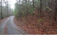 Home for sale: Wagon Tracks Rd., Mineral Bluff, GA 30559