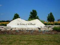 Home for sale: Lot 132 Estates Of Millbrook, Millbrook, IL 60536