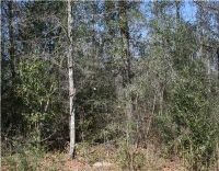 Home for sale: Sumrall Rd., Lucedale, MS 39452