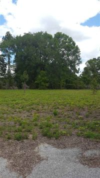 Home for sale: 16527 N.W. 174th Dr., Alachua, FL 32615