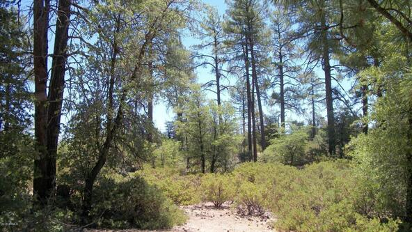 509 N. Chaparral Pines Dr., Payson, AZ 85541 Photo 20