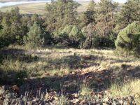 Home for sale: Elk Ln., Laguna Vista, Rutheron, NM 87575