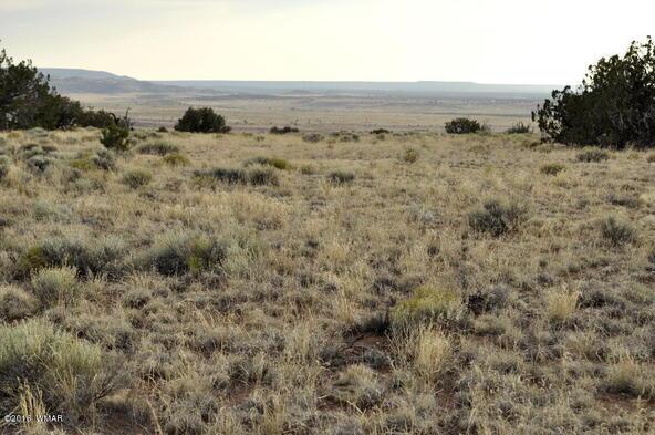 297 Woodridge Ranch, Concho, AZ 85924 Photo 7