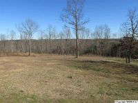 Home for sale: Rd. 1902, Fort Payne, AL 35967