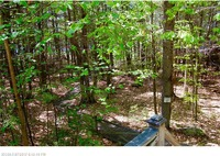 Home for sale: 0 (Map 10 Lot 36) Shore Rd., Fayette, ME 04349