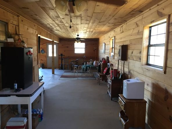 2430 Lost Creek Rd., Russellville, AL 35653 Photo 25