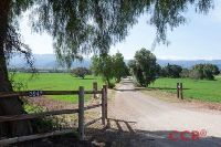 Home for sale: 3942 Roblar Avenue, Santa Ynez, CA 93460