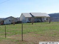 Home for sale: 13951 Gallant Rd., Gallant, AL 35972