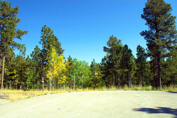 Lot 4, Powder House Trail, Lead, SD 57754 Photo 27