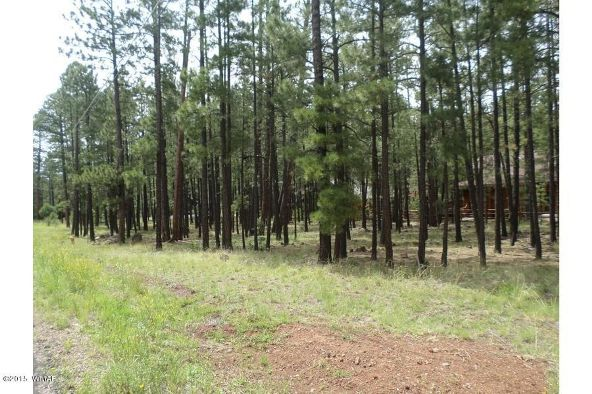 7828 Buck Springs Rd., Pinetop, AZ 85935 Photo 3