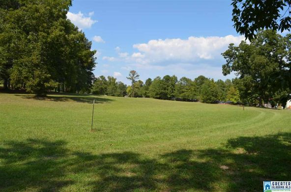 80 Hwy. 411, Odenville, AL 35120 Photo 8