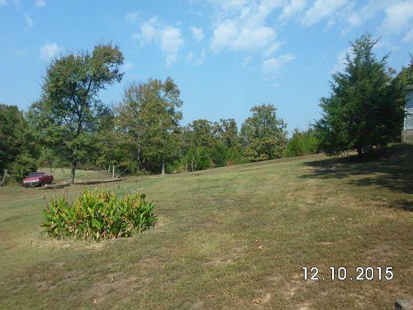 222 Cr 3226, Clarksville, AR 72830 Photo 20