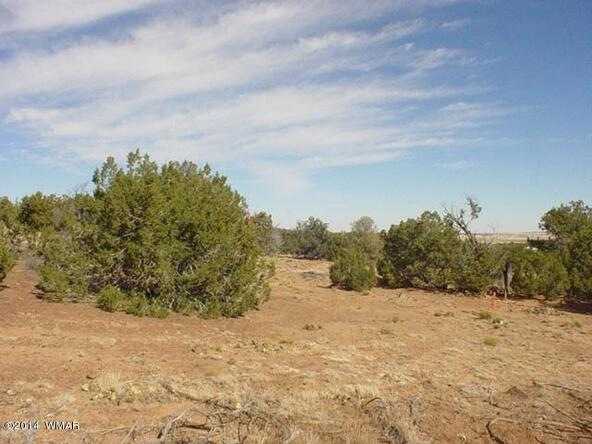 1b N. 8690, Concho, AZ 85924 Photo 13