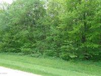 Home for sale: Lot 68 Cruiser, Galena, IL 61036
