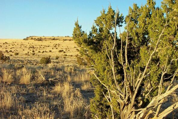 6218 S. Prairie Grass Ln., Williams, AZ 86046 Photo 1