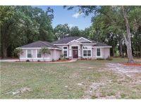 Home for sale: 14117 Bevlin Acres Ln., Dover, FL 33527