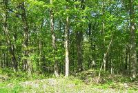 Home for sale: Woods Rd., Germantown, NY 12526