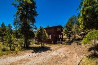 Home for sale: 204 Maple Dr., Ruidoso, NM 88345