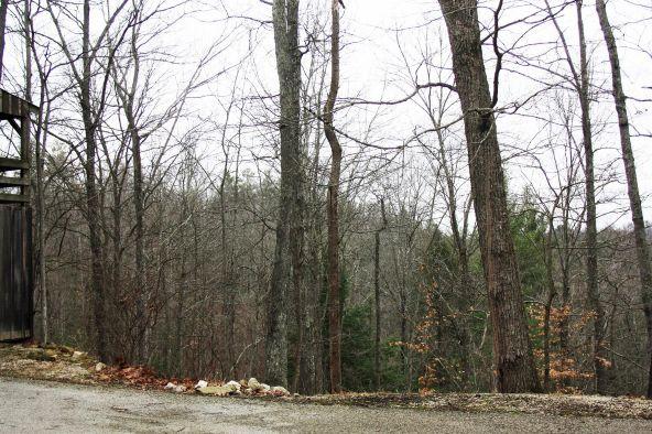 490 Cliffview, Campton, KY 41301 Photo 71