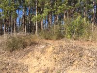 Home for sale: 442 Whooping Creek Rd., Carrollton, GA 30116