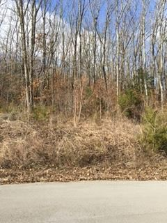 525 Willow Hill Cir., Murfreesboro, TN 37127 Photo 2