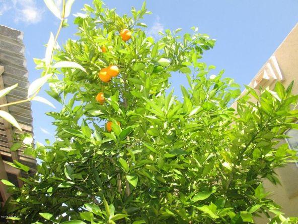 15968 S. Avenida Villa Grata Salvaje, Sahuarita, AZ 85629 Photo 24