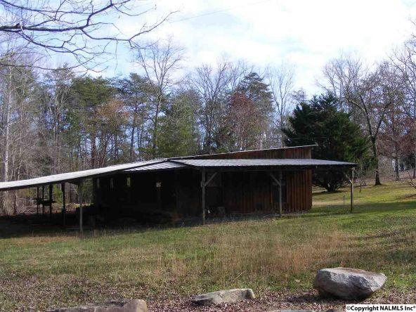 9416 County Rd. 103, Mentone, AL 35984 Photo 35