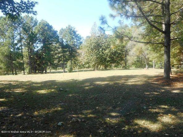 1820 County Rd. 67, Bankston, AL 35542 Photo 5