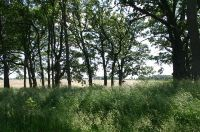 Home for sale: State Line Rd., Hebron, IL 60034