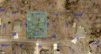 Home for sale: Lot 8 Hobart Dr., Forsyth, MO 65653