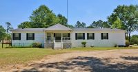 Home for sale: 230 County Line Rd. N., Sylvester, GA 31791