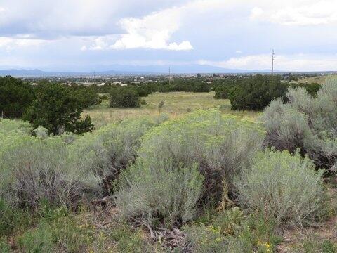 Rabbit Rd., Santa Fe, NM 87508 Photo 5