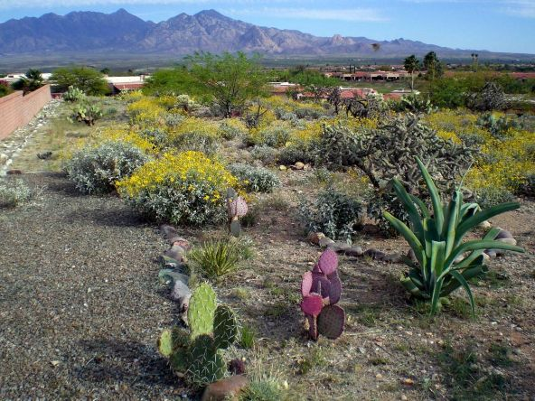 2025 W. Via Nuevo Leon, Green Valley, AZ 85622 Photo 2