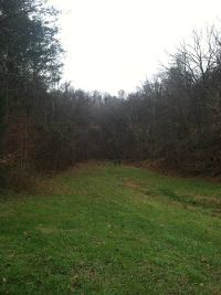 Home for sale: 629 N. Shiloh Rd., Seymour, TN 37865