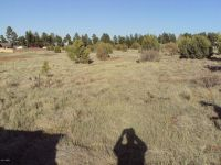 Home for sale: 2745/49 Trevor Way, Overgaard, AZ 85933