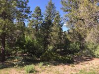 Home for sale: Ponderosa Pine St. W., Mount Carmel, UT 84755