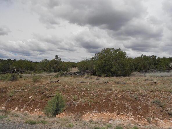4650 W. Dillon Wash Rd., Prescott, AZ 86305 Photo 13