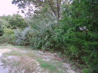 Home for sale: Lot 26 Pickett Ridge Ct., Kirbyville, MO 65679
